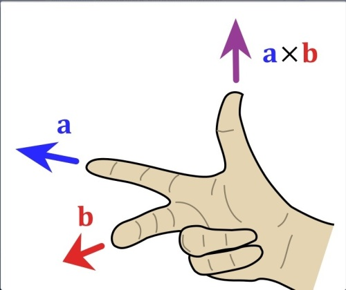 "To find the direction of the vector (or cross) product of two vectors ""a"" and ""b"", we point the first finger in the direction of ""a"", the second finger in the direction of ""b"", and the thumb shows the direction of the new vector."